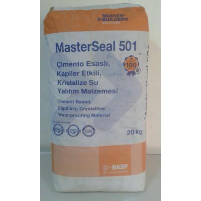 MASTERSEAL 501-20KG
